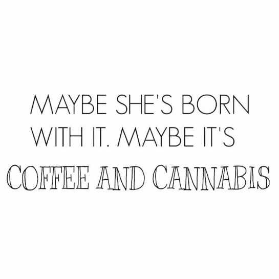 ・ It's definitely coffee and ・ ・ ・ ・ ・ #cannabis #flower #pot #medibles…