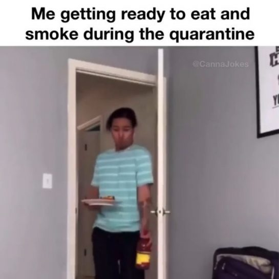 What are you doing in quarantine?🤔 .FOLLOW @indicamood .FOLLOW @indicamood ____________________________ #stonermemes #stoners #stoner…