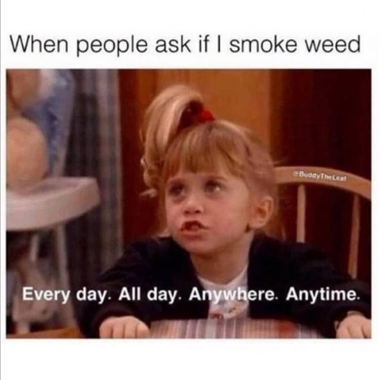 Mood Follow @sandyhash420 for daily cannabis content #weedmemes #weedmeme #weedmemesdaily #stonermemes #weedporn #highlife #memestagram…