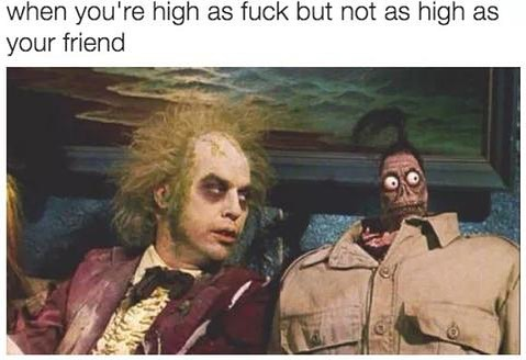lmfaoooo me when I'm out with my homies • • • #liveresin #shatter #resin…