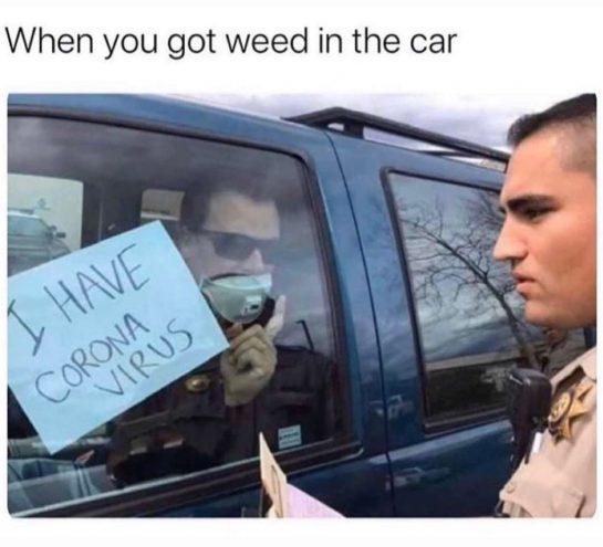 ~ #memes #meme #dankmemes #memes #memesdaily #dailymemes #dankdankmemes #funny #funnymemes #funnymemesdaily #funnyshit #funnyshit #weedmemes…