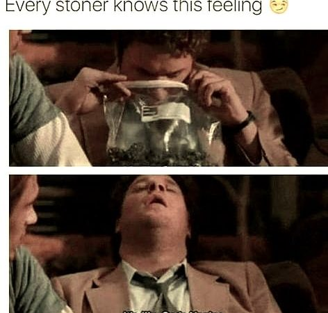 Yep I've said this many times 🤣🤣🤣 #weedmeme #weed #weedmemes #memes #meme #cannabis #weedporn…