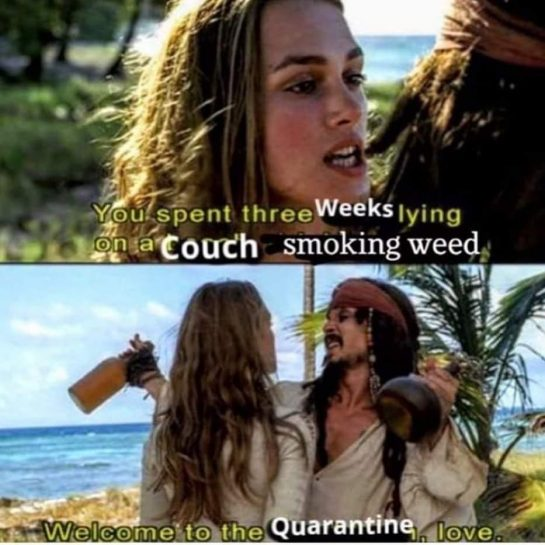 It's the only way to live #Weedmeme #weed #quarantine