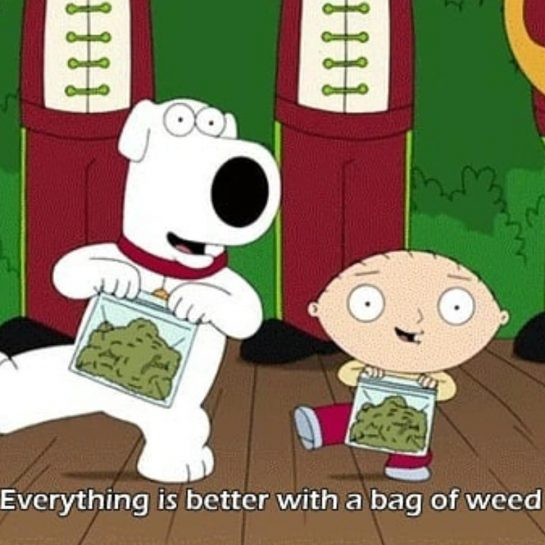 I can agree that everything's better with a bag of weed #weedman #weedsociety #weedmeme…