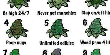 Pick 2️⤵️ @BEERNWEED 𝗕𝗲𝘀𝘁 𝗦𝘁𝗼𝗻𝗲𝗿 𝗠𝗲𝗺𝗲𝘀 𝗼𝗻 𝗜𝗚 . . . . . #weedmeme…
