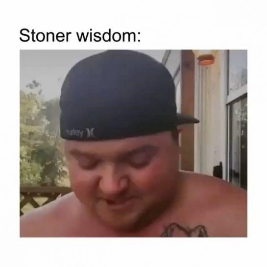 Stoner wisdom . Follow @st0nermemes Follow @st0nermemes . . #highashopetour #weedmeme #stonernation420 #stonedsociety #highasf…