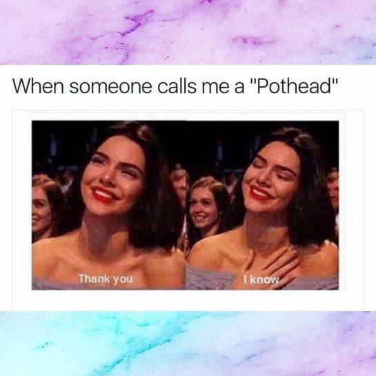 #pothead #potheads #420girls #girlswhosmokeweed #girlswhosmoke #stonerbabe #stonerbabes #420community #cannabiscommunity #cannabisculture #weedmeme #weedmemes #420meme #420memes…