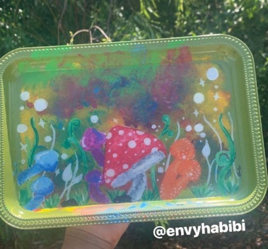 Some trippie shrooms I had a lot of fun with this tray This tray…