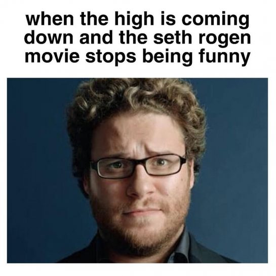 seth rogan movies smack when you're zooted • • • Follow @rollsmokevibe420 for your…