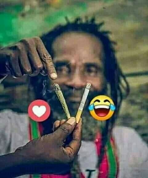 Daily funniest memes Follow fast @ #highasakite, #highasf, #highasfuck, #highasfuckrightnow, #highashell, #highashope, #highashopetour, #highasshit,…