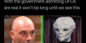 If anyone deserves to interview the first alien it's @joerogan #weedmemes #weedmeme #memes #dankmemes…