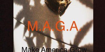 #pepethefrog # #weedmeme #qanonworldwide #makeamericagrowagain #makeamericagrowersagain #makeamericaGagain #wwg1wga #thegreatawakening #growagarden #growsomeweed #growveggies #thegrowawakening #bringdownthedeepstate…