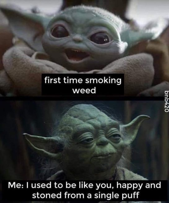 Tag a first timer⬇️🥦 : : : : Tags: #weedporn #marijuanamovement #legalizemarijuana #weedmemes #weedmemesdaily…