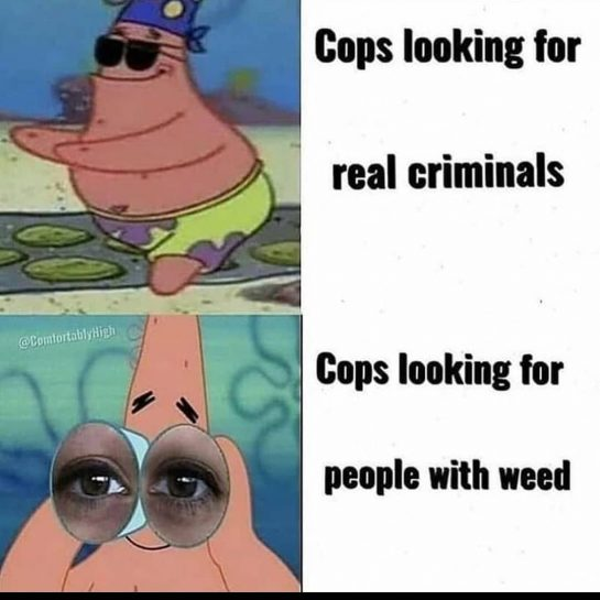 :^) #weed #weedmeme Tags: #meme #memes #follow #like #followforfollow #likeforfollow #followforlikes #followforlike #likeforlikes #likeforlike…