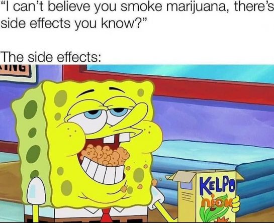Got Any Crisps? Chocolate? Nachos? Cereal?🤤🧀 #420 #spongebob #spongebobmemes #420girls #stonerlife #likeforlike #love #green…