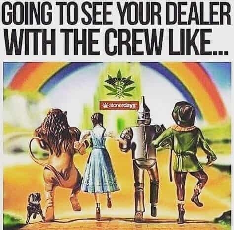 Tag your crew #weedmeme #weed #weedmemes #memes #meme #cannabis #weedporn #stoner #weedhumor #marijuana #cannabiscommunity…
