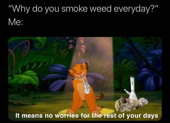 #weedmemes #weedmeme #memes #dankmemes #potmemes #funnystoners #stonernation #stonermeme #stonermemes #stonermemes #stonermemesdaily #stonermemes420 #420meme #420memes…