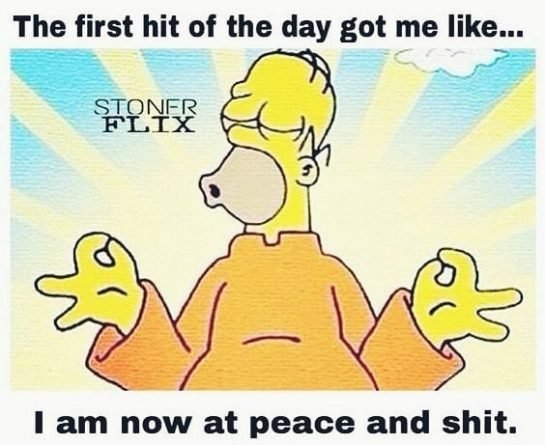 How does that first bud hit you?? . . . #weedmeme #weed #weedmemes #memes…