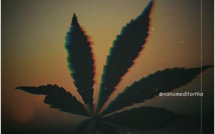 Double tap if you like. . . #weedmeme #dankmemes #weed #weedcomunity #weedshare #weedpainting #420…