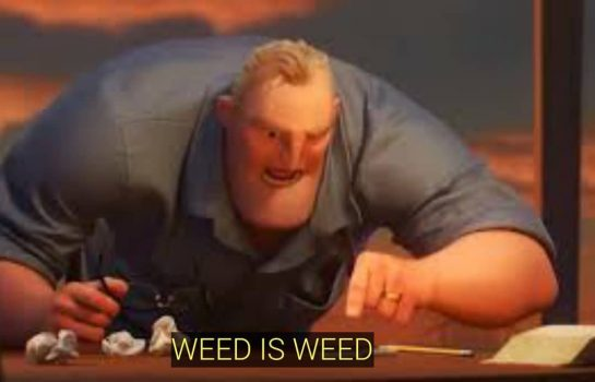 When I ask my boyfriend not to mix weed strains My bf: #memes #freshmemes…