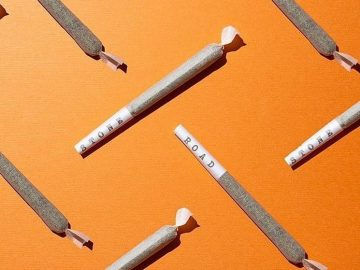 #weed #lightlytoastednyc #weedporn #weedmeme #weedmemes #weedstagram #weedstagram420 #smokeweedeveryday #pothead #potheads #vapelife #cannabis #cannabiscommunity #weedhumor…
