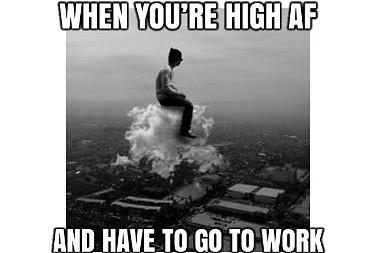 """Beep Beep"" #weedmeme #weed #weedmemes #memes #meme #cannabis #weedporn #stoner #weedhumor #marijuana #cannabiscommunity #weedstagram…"