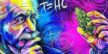 Dope/badass/sick photo of ALBERT EINSTEIN N some WEED ;)️ #alberteinstein #thc #stonerslife #420 #420community…