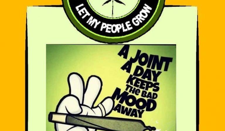 Rise and shine it's marijuana time . . . . . Follow @_shareef_admi ________________________…