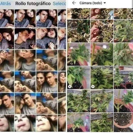 Tan real ajaj #lapalida . #weedmeme #weedstagram420 #memes #snoop #dog #420 #420life #cannabiscommunity #nomaspresosporplantar…