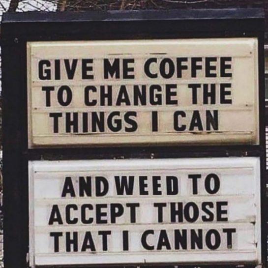 True dat! 🤪. #weed #smokeweedeveryday #cannabiscommunity #pothead #potheadsociety #potheadlife #rollinstoned #smokeweed #gethigh #wakeandbake #smokedaily…