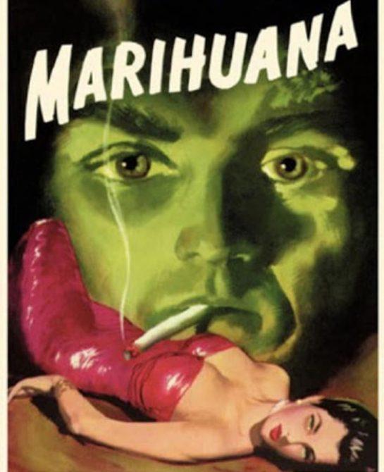 It's Marijuana, sir. #weedmeme #weed #weedmemes #memes #meme #cannabis #weedporn #stoner #weedhumor #marijuana #cannabiscommunity…