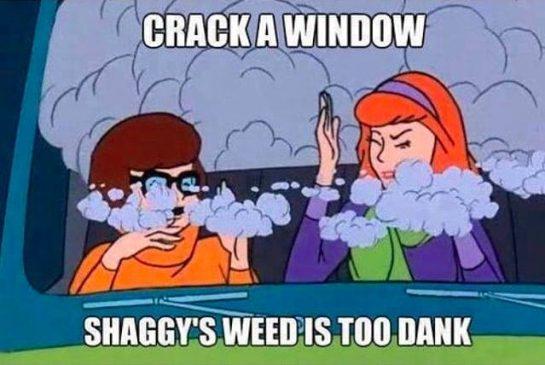 """""""Shaggys weed is too dank"""" #weedmeme #weedmemes #weeddreams #nostalgia #stonerthoughts #stoners #stonerlife #stoner #stoners420…"""