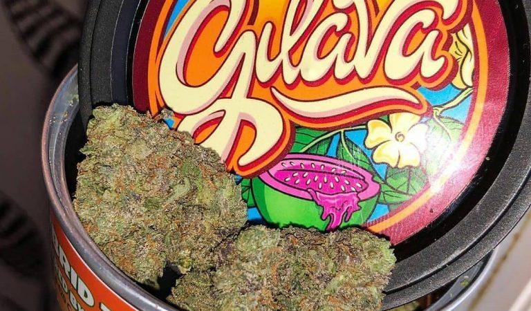 #medicalmarijuana #joinme #weedlife #girls #ganjagirls420 #society #stonerchick #stonergirls #blunt #stonerlife #pot #bud #weedmeme #stayhigh…