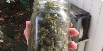 Jar full of weed is All you _ _ _ _ . . .…